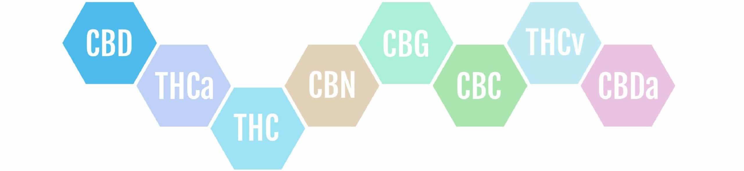 cbDNA CBD Canabidiol THC 01 scaled
