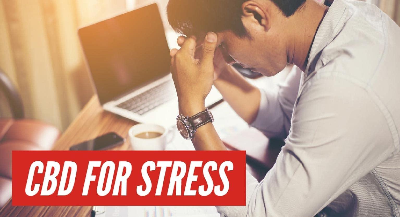 CBD Oil for Stress cbDNA