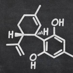 Can I overdose on CBD oil? What is the highest dose advised by doctors?